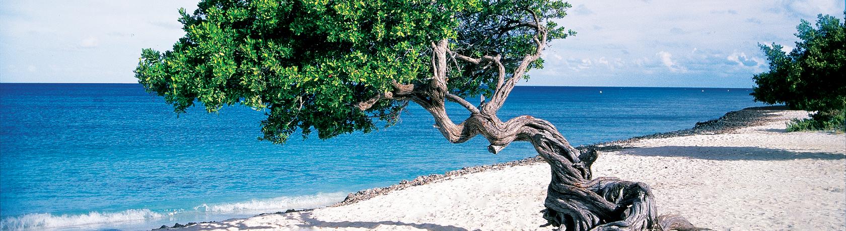 Caribbean Southern úticél